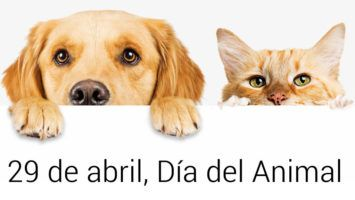 29 de abril, Día del Animal