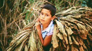Dia Internacional contra la Esclavitud Infantil