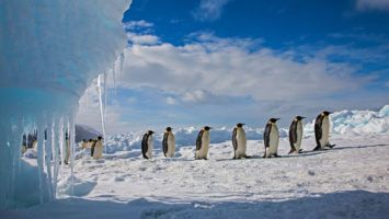 El Polo Sur se calienta tres veces más