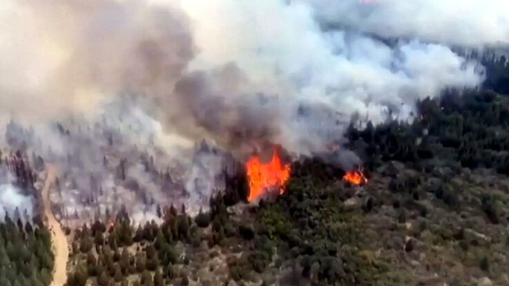 Incendio forestal al sur de Argentina