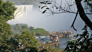 La Selva Misionera se ofrece como Maravilla Natural