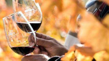 Placer del vino y el turismo