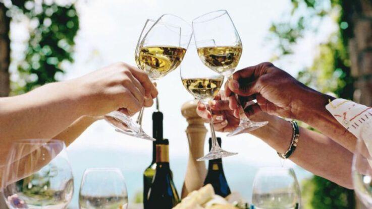 Torrontés el vino más argentino