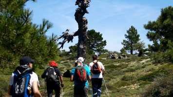 Trekking en Los Antiguos