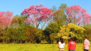Turismo rural en Misiones