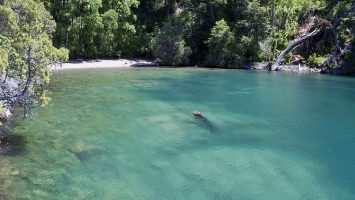 Yuco - Lago Nonthue - Hua Hum