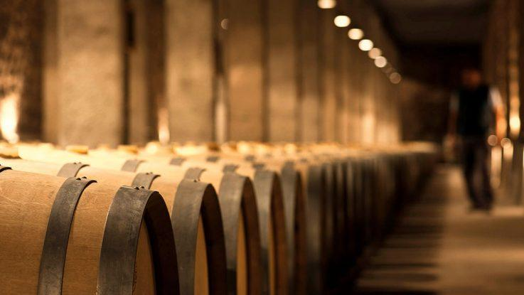 el vino argentino